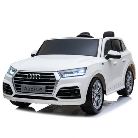 China Gold Supplier for Wholesale Rc Car -
