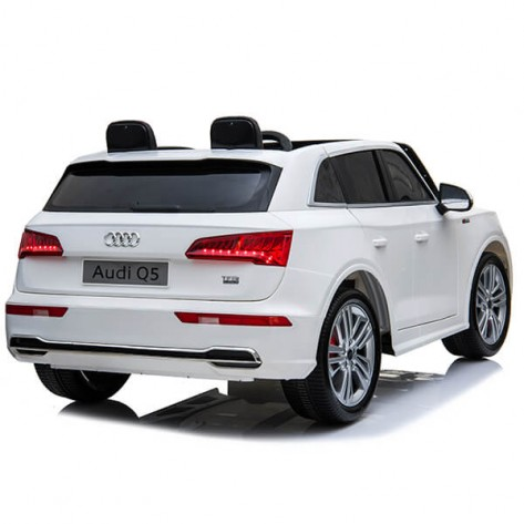 Audi Q5 Two Seats low door